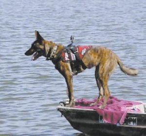 "A cadaver dog was seen on a lake during part two of ""The Disappearance of Crystal Rogers"" on Oxygen Network."