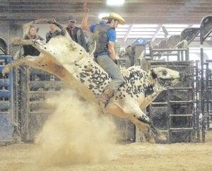 Letcher County rodeo bull rider Rusty Lewis hangs onto the back of a bucking bull in this photo from his Facebook page. Lewis will compete in the annual Isom Days Rodeo this weekend.