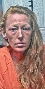The grand jury indicted Natasha Gibson on a charge of murder in connection with the shooting death of her husband.